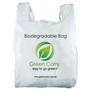 Carry Bag 1